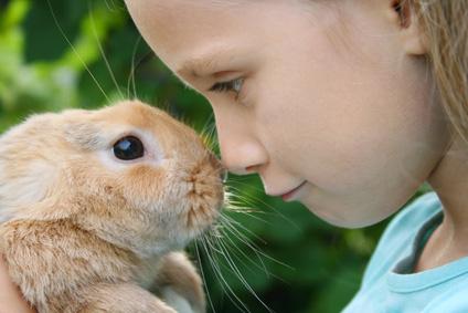 Bambini e conigli nani: connubio perfetto?